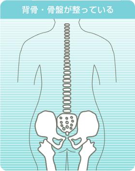 背骨・骨盤が整っていると姿勢がよくなる