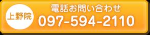 上野院の問合せ番号:097-594-2110